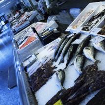 Mały targ rybny, Lublana, Slovenia