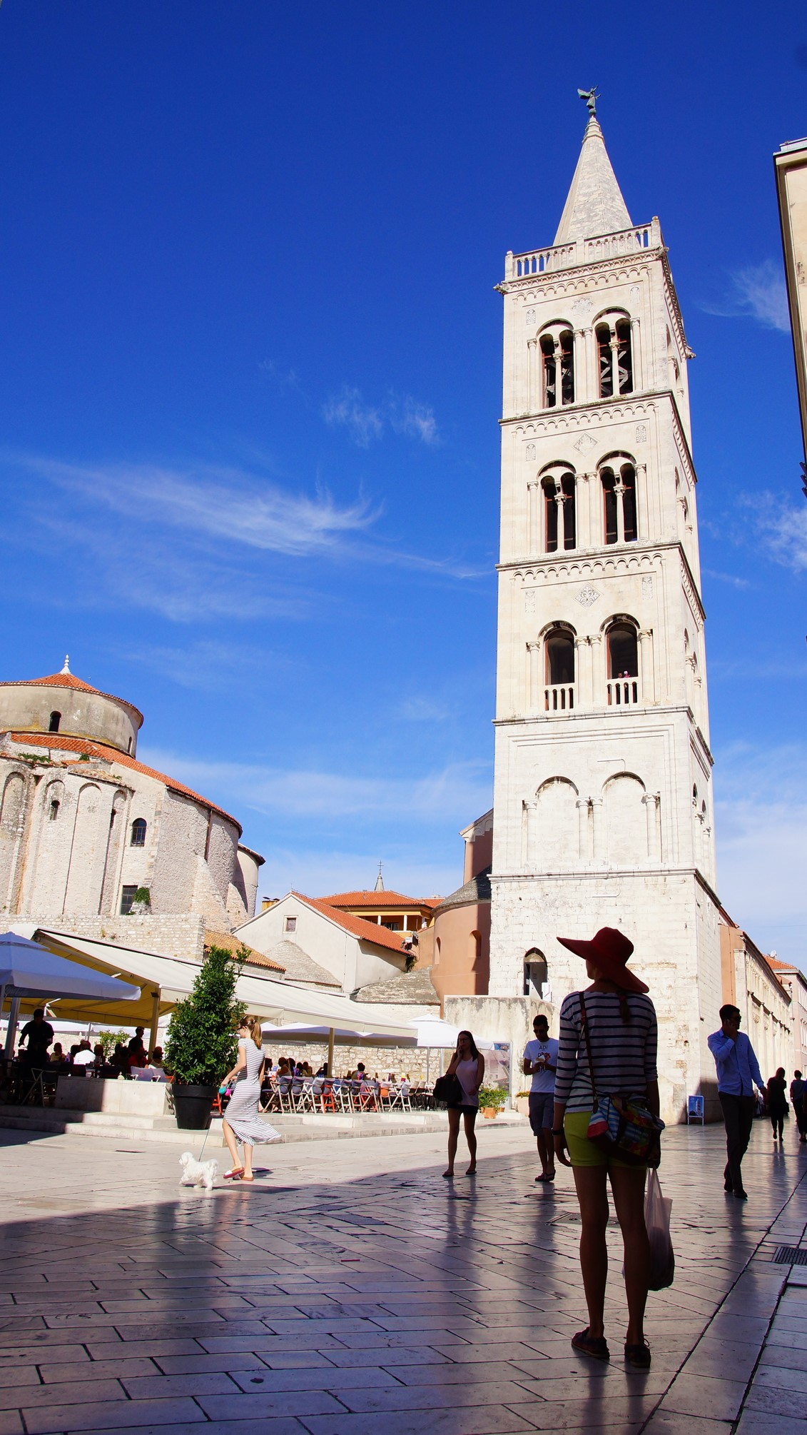 Cathedral of St Anastasia, Zadar