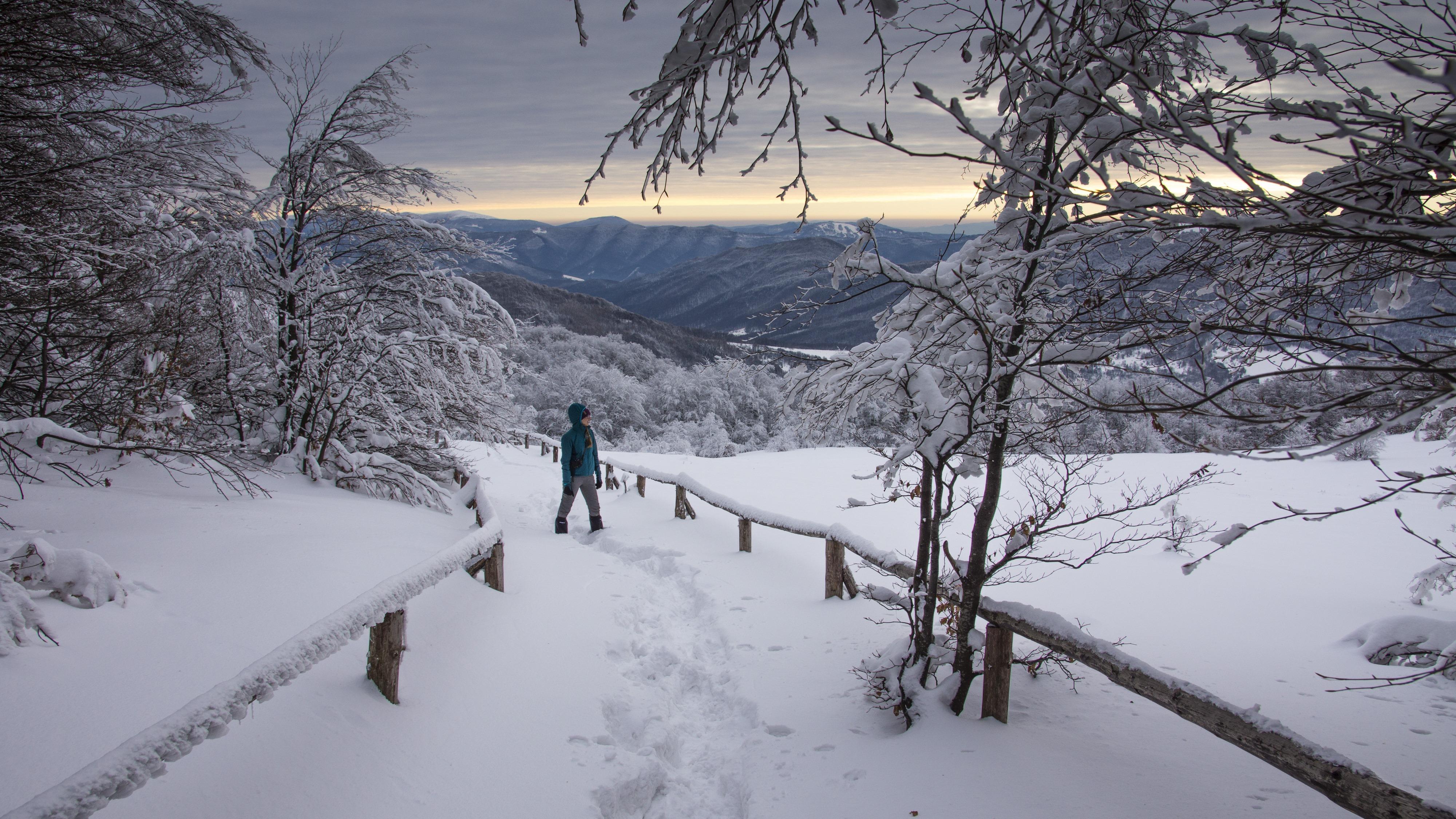 Tarnica, Bieszczady