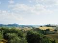 Toskania, w drodze do Montepulciano