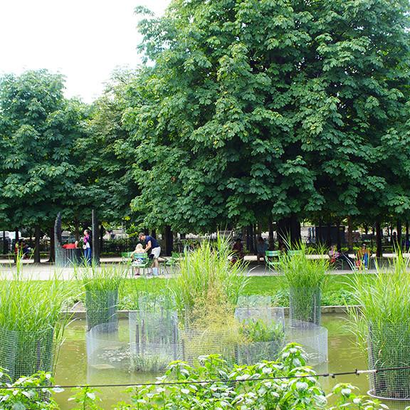 Ogrody Tuileries, PAris