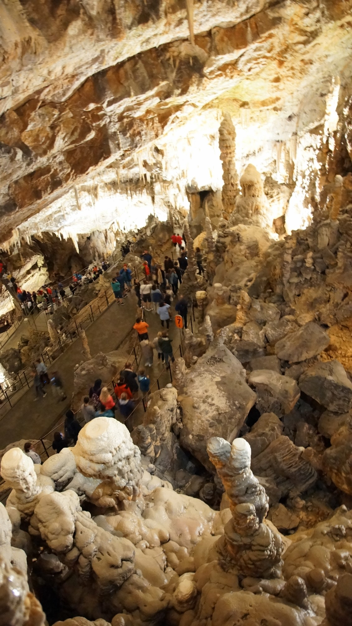 Postojna Jaskinia; Słowenia