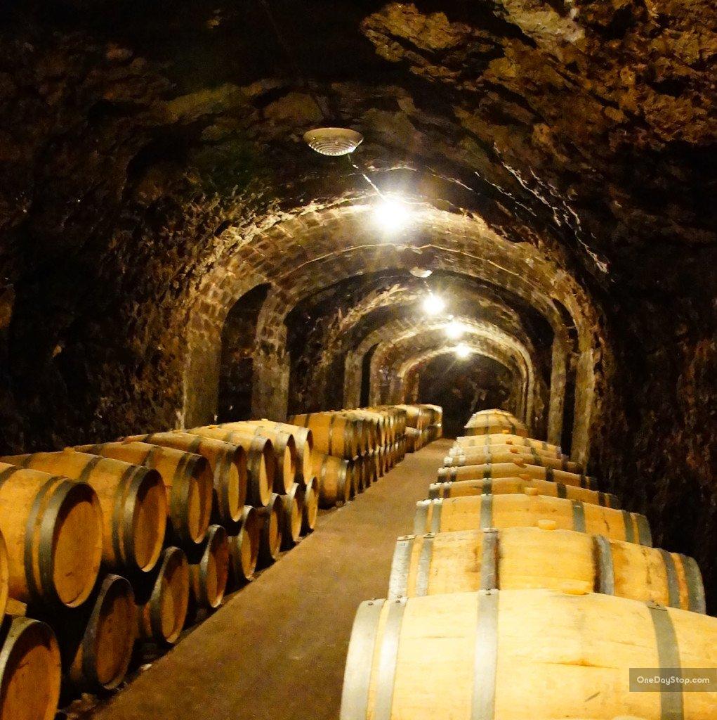 Disnoko cellar, Tokaj