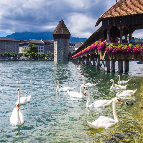 Lucerna, Szwajcaria  (3)