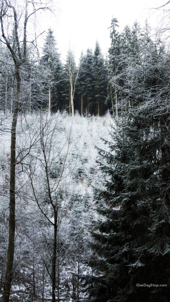 Skalne Miasto zima, Czechy