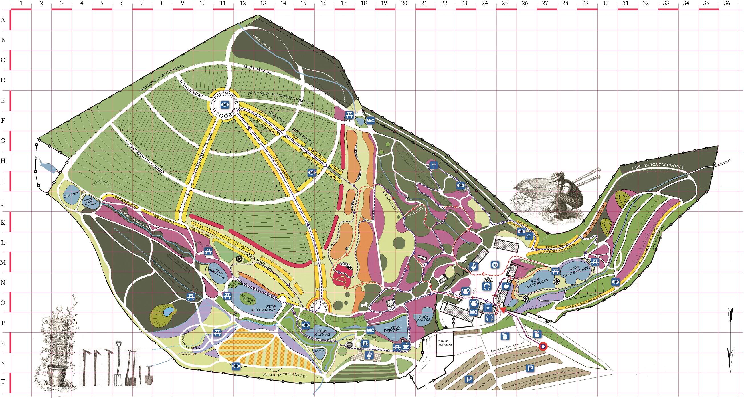 Mapa Arboretum w Wojsławicach
