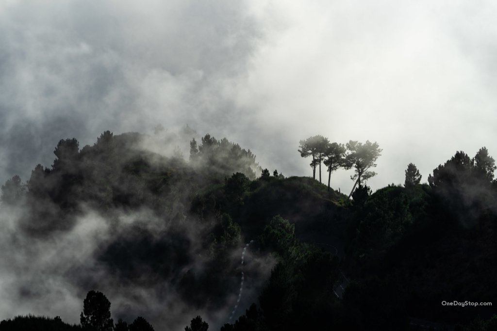 Miradouros do Paredão - Madeira