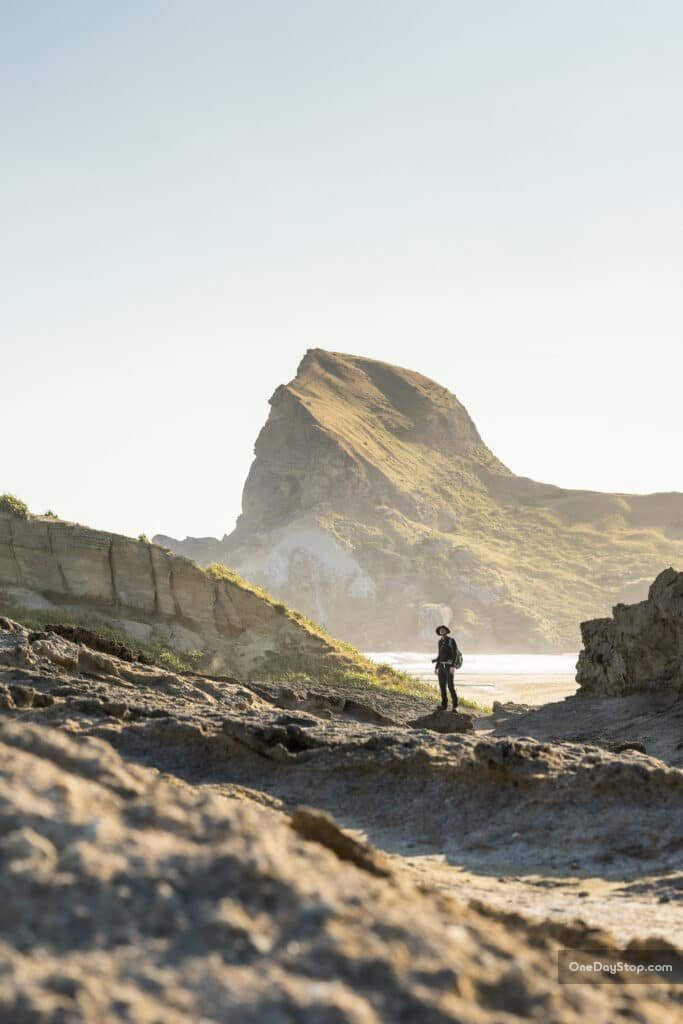Castlepoint - Nowa Zelandia