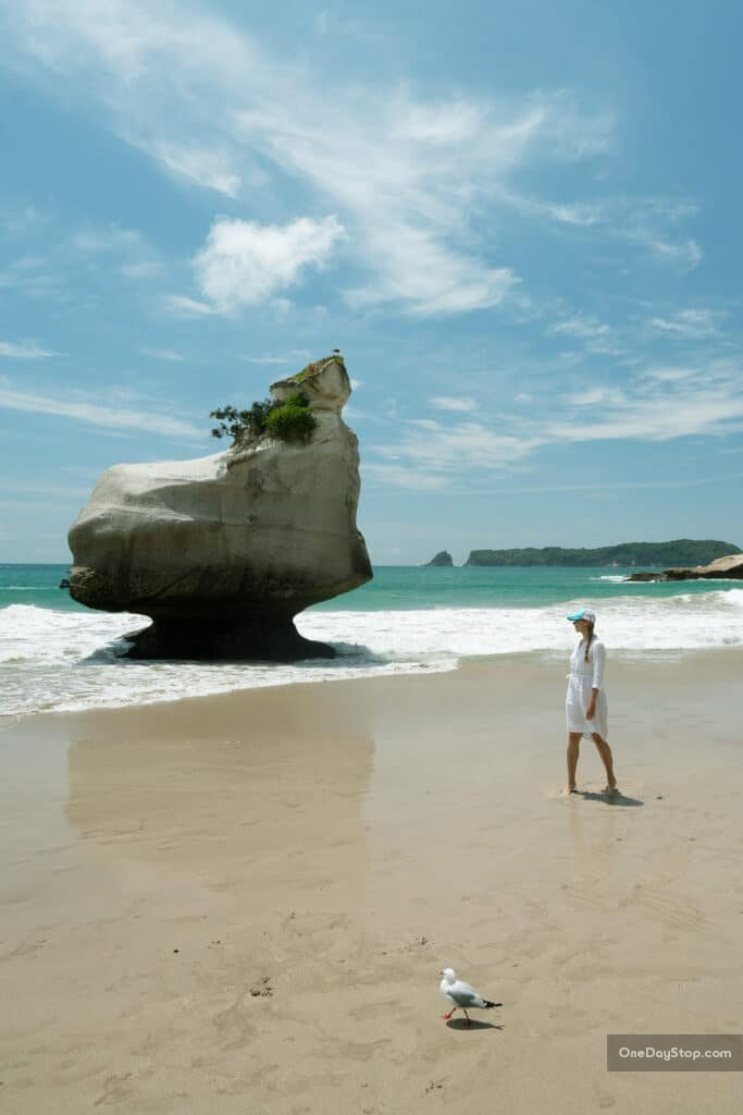 Hahei - Cathedral Cove