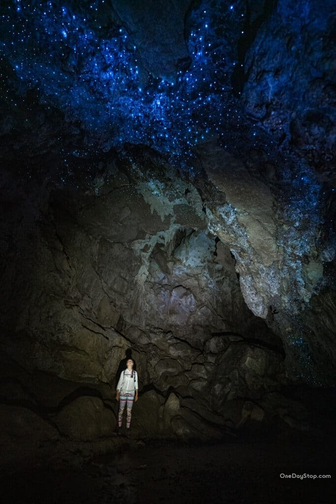 Waipu - Glowworm Cave