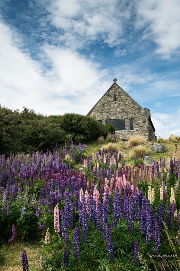 Nowa Zelandia -